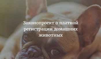 регистрация_домашних_животных